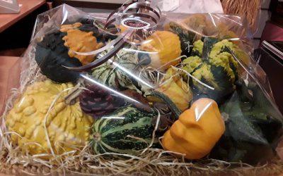 Volop verkrijgbaar onze eigen geteelde pompoenen en kalebassen, in vele kleuren soorten en maten.